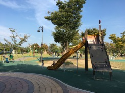 A huge playscape!